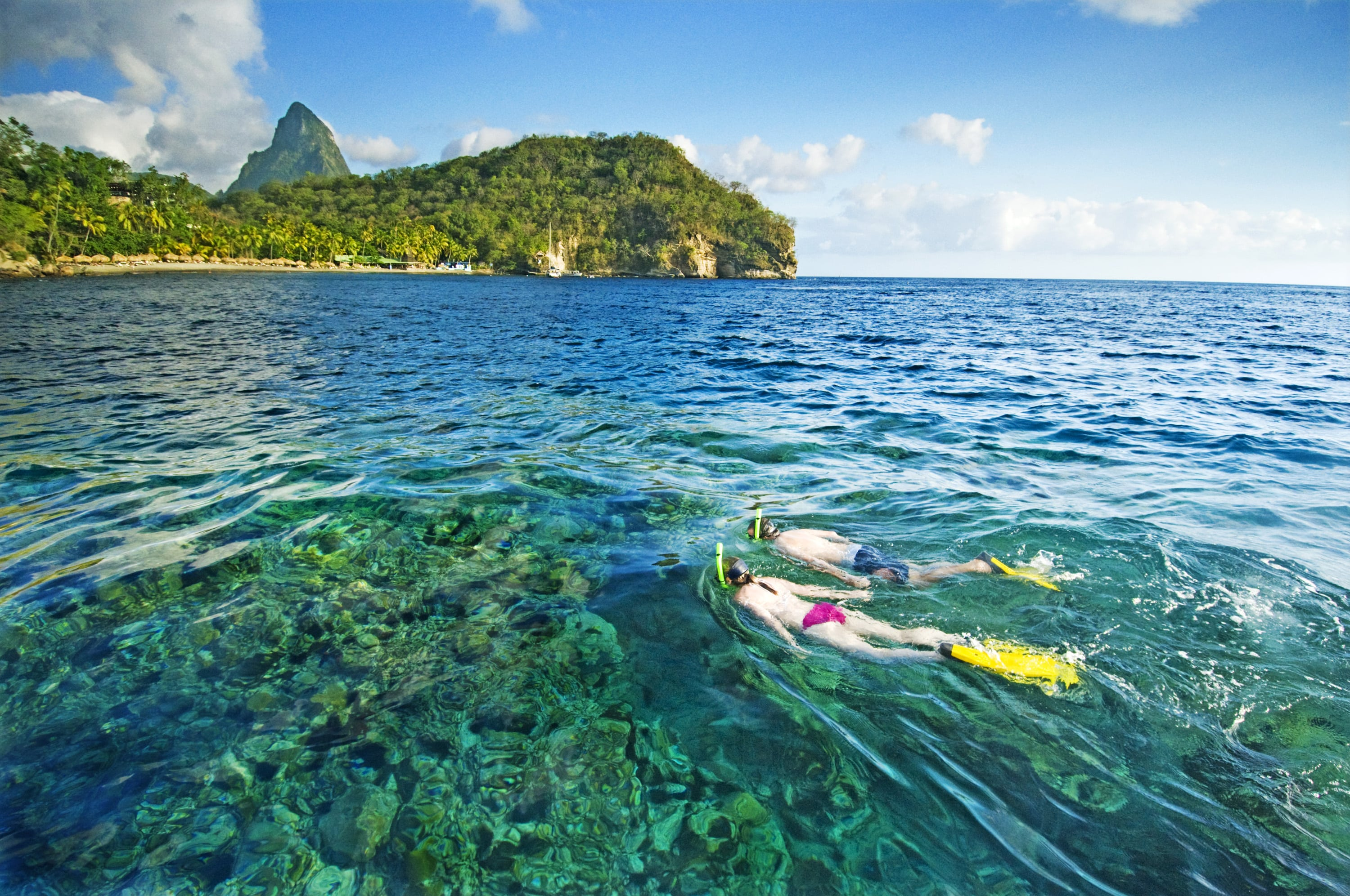 St. Lucia's best snorkeling reefs begin mere yards from the shore and are home to a profusion of unique tropical marine life.