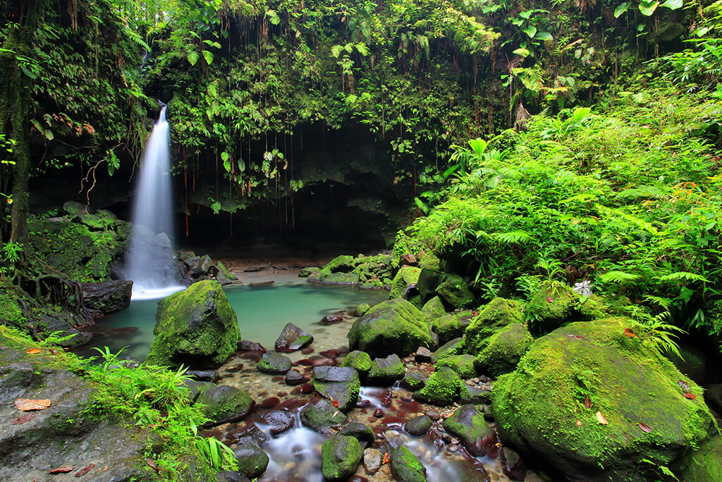 The Emerald Pool is one of Dominica's most popular waterfalls.