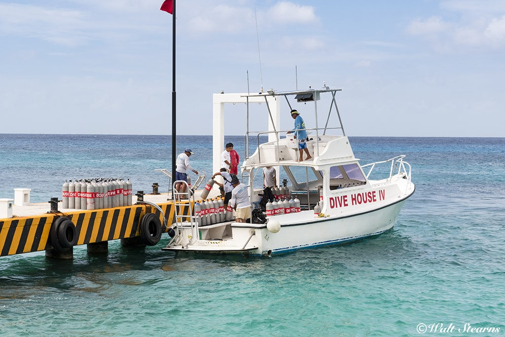Dive House operates a fleet of boats that stop at Fiesta Americana for pickups. Divers can set their itinerary based on interests and experience level.