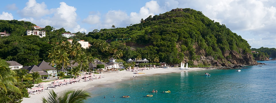 Palm trees line the beach at BodyHoliday. The resort's sprawling grounds are tucked into a wooded coastal valley.