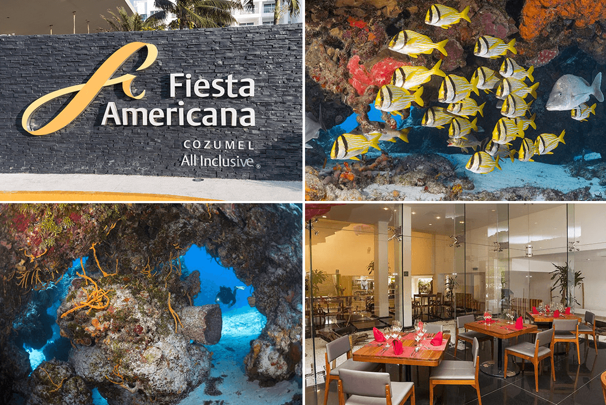 Fiesta Americana is an upscale all-inclusive beach resort offering upscale dining and a range of resort amenities, along with convenient access to Cozumel's best dive sites.