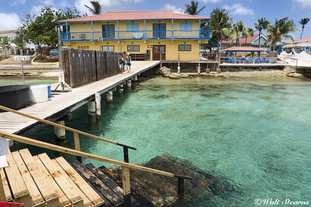 The dock at Divi Flamingo Beach Resort & Casino provides easy, secure water access for first-time shore dives.