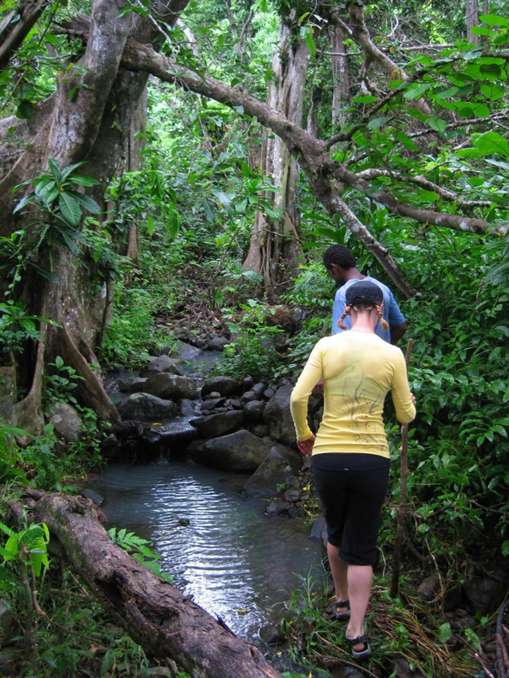 Hikers can explore trails on Beqa, or take day trips to Viti Levu for more trekking adventures.