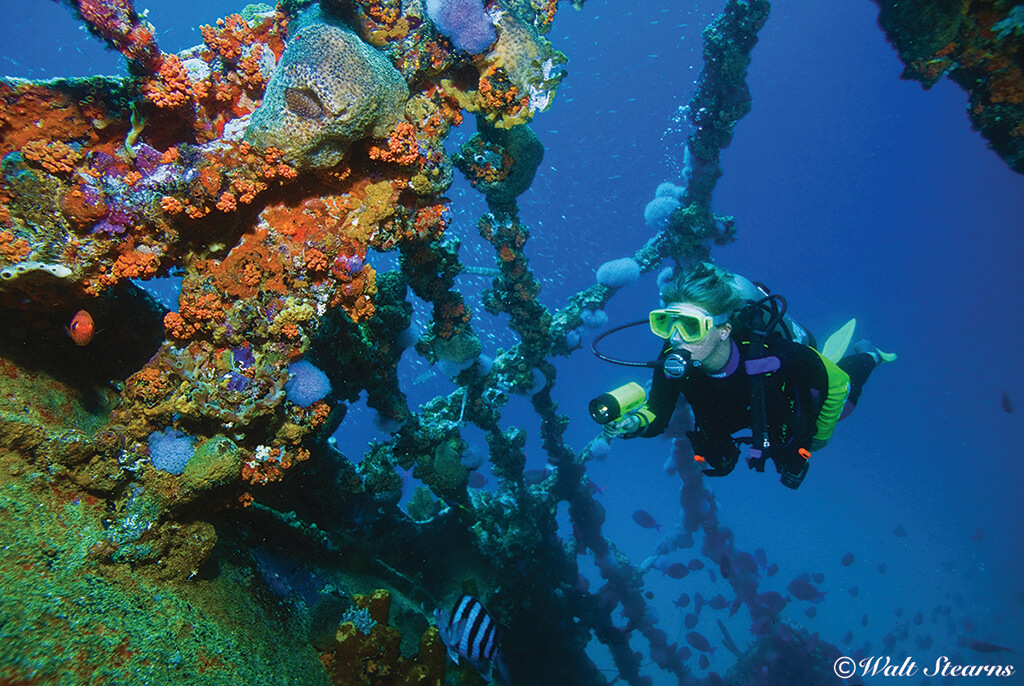 Aruba's Antilla wreck sits in clear water and rises close to the surface, making it ideal for both divers and snorkelers to explore.