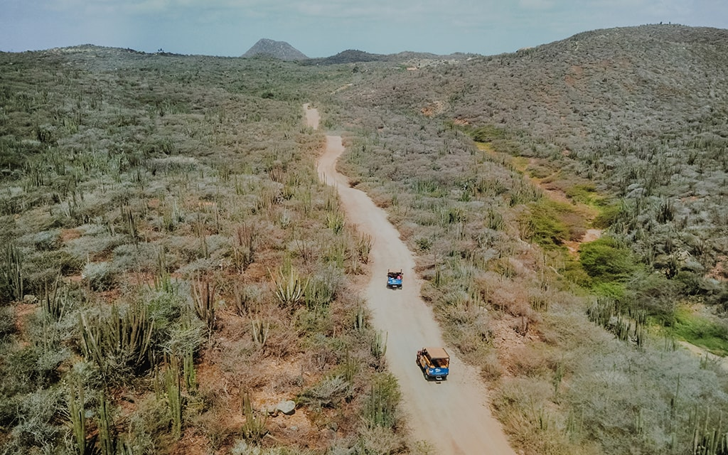 Offroad tours venture into the arid landscapes of Aruba's Arikok National Park. Nearby are the ruins of a 19th-century gold mine.