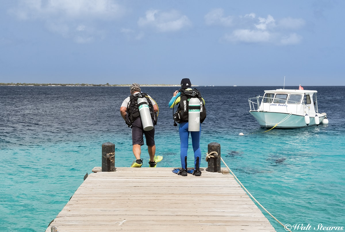 At a number of Bonaire's oceanfront dive resorts, dive sites are just a giant stride away.