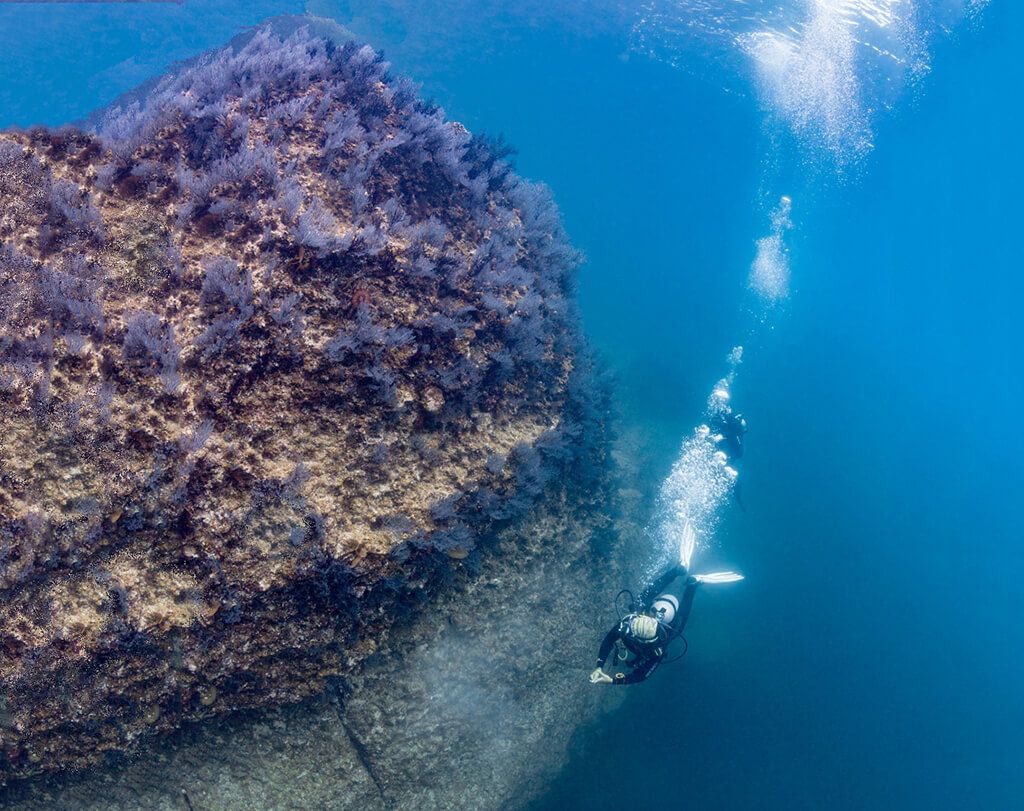 Underwater landscapes created by volcanic forces provide dramatic walls and pinnacles for divers to explore.