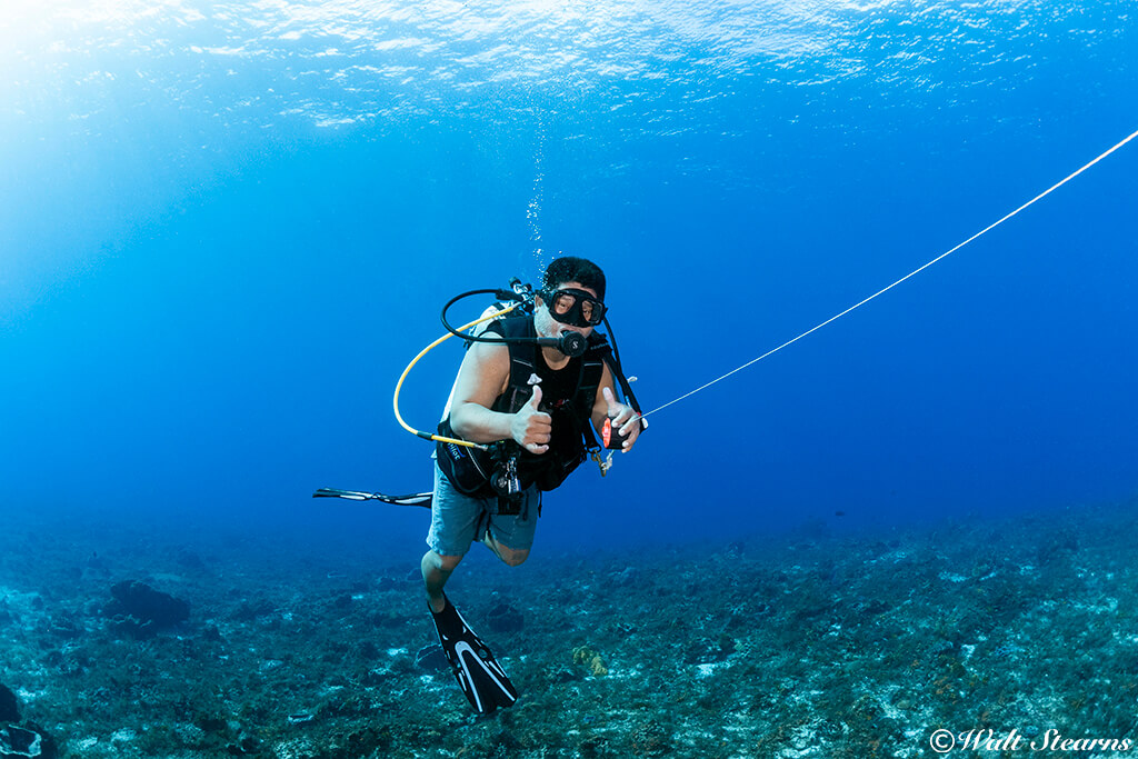 Cozumel dive guides typically carry surface markers on up lines to mark the group's position.