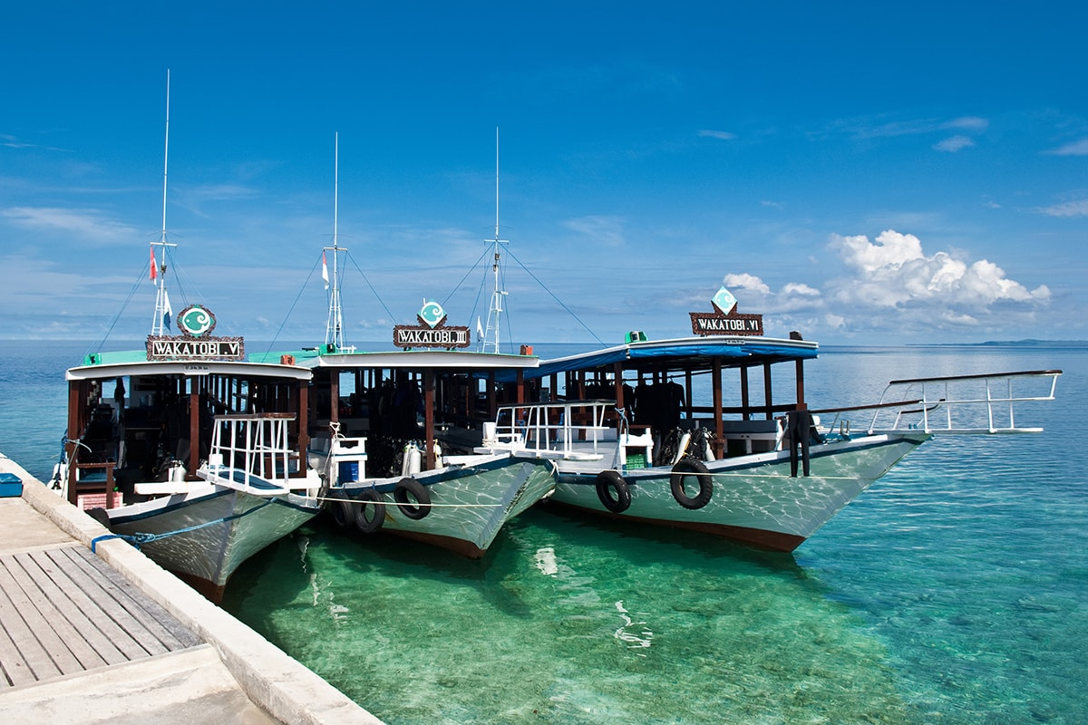 A fleet of 75-foot-long dive boats provide shaded comfort and relaxing cruises to dive sites.