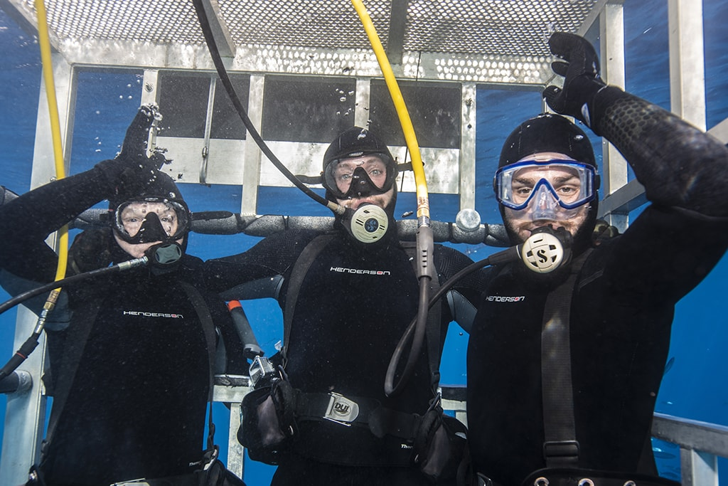 Divers use surface-supplied air when viewing from shallow cages. Photo courtesy BigAnimals Global Expeditions