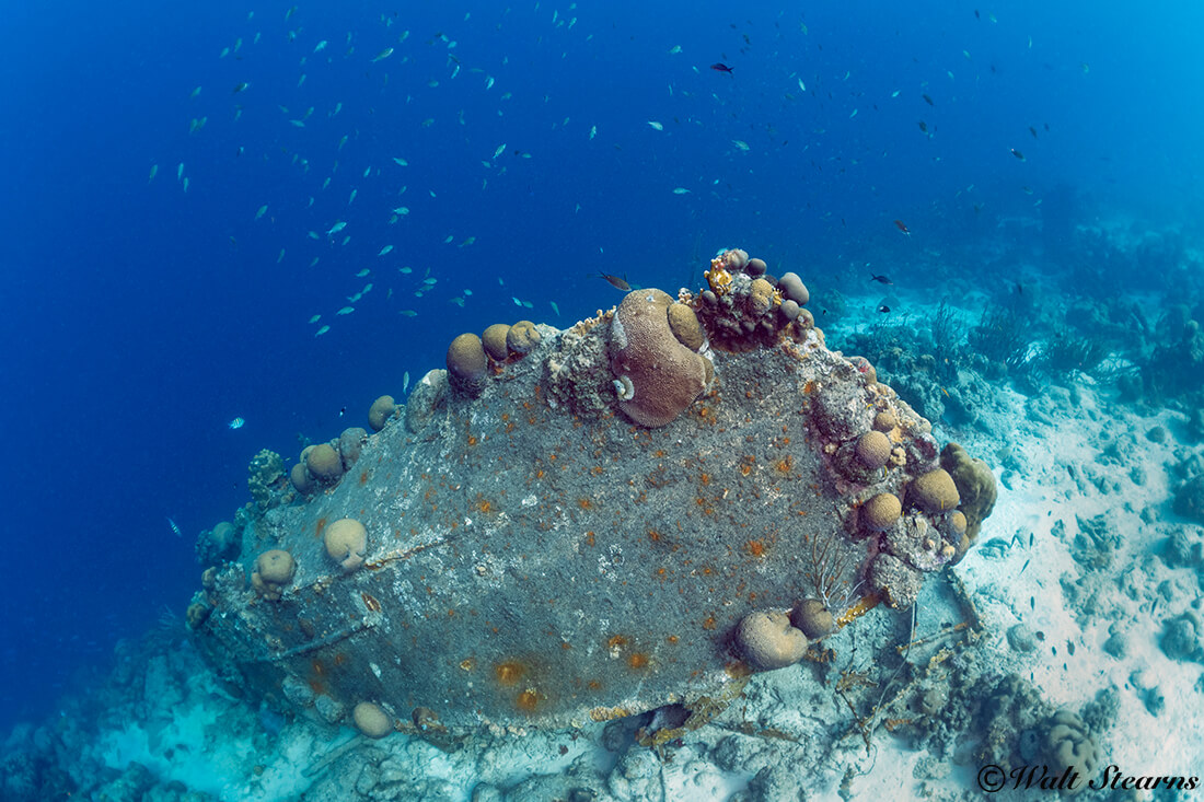 The small wreck known as La Machaca sits on the edge of the reef slope, close to Captain Don's Habitat.