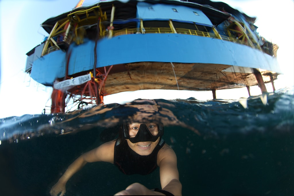 Divers can explore below pilings of the SeaVenture to discover a landscape of artificial reefs and fish-attracting structures.