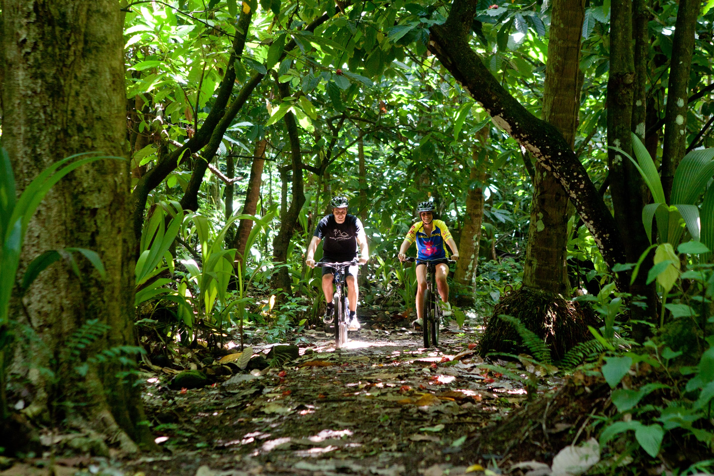 On the grounds of a former sugar plantation, a network of groomed bike trails lead through orchards, fields, and forests.