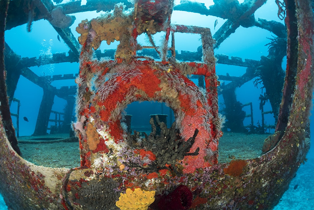 The wreck of the Felipe Xicotencatl is a favorite afternoon boat dive.