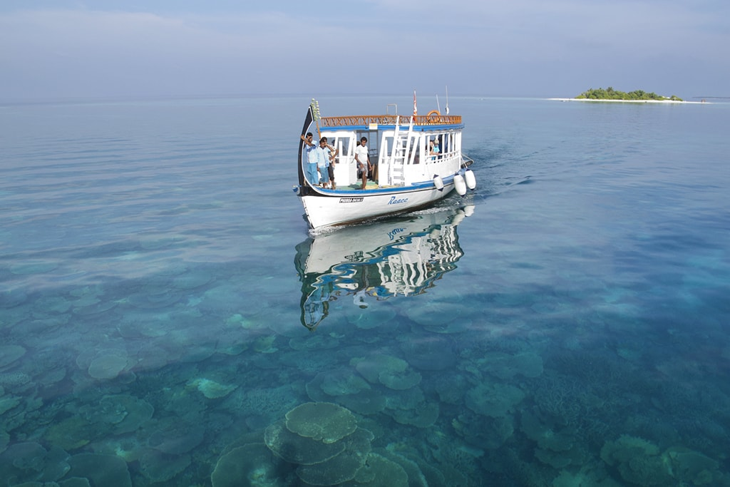 Dive resorts often use traditional Maldivian boats known as dhonis.