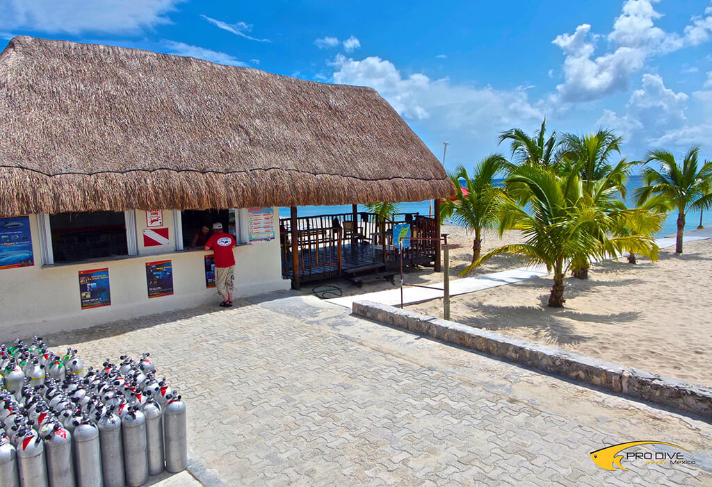A full-service Pro Dive shop is located on the beach at Allegro Cozumel.