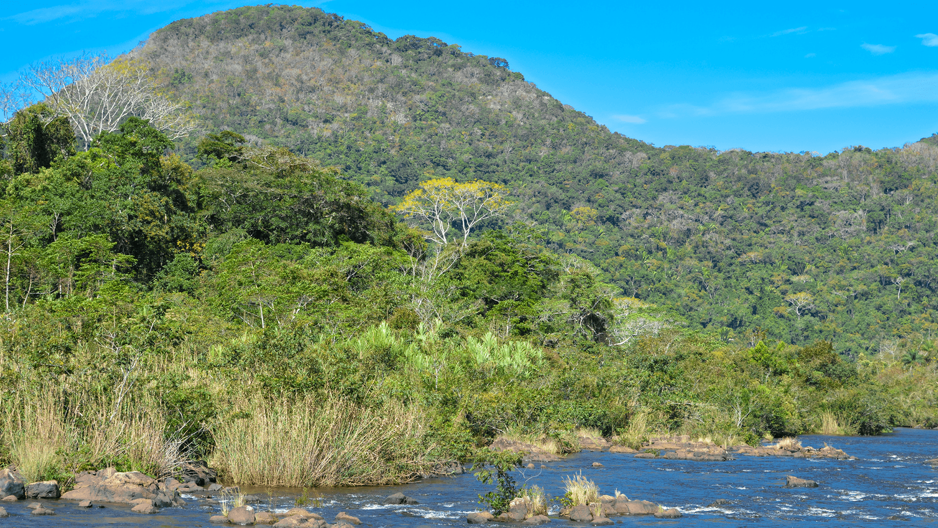 Landscapes on the border of remote and hard to reach Mountain Pine Ridge Forest Reserve and Chiquibul Nature Reserve in Belize