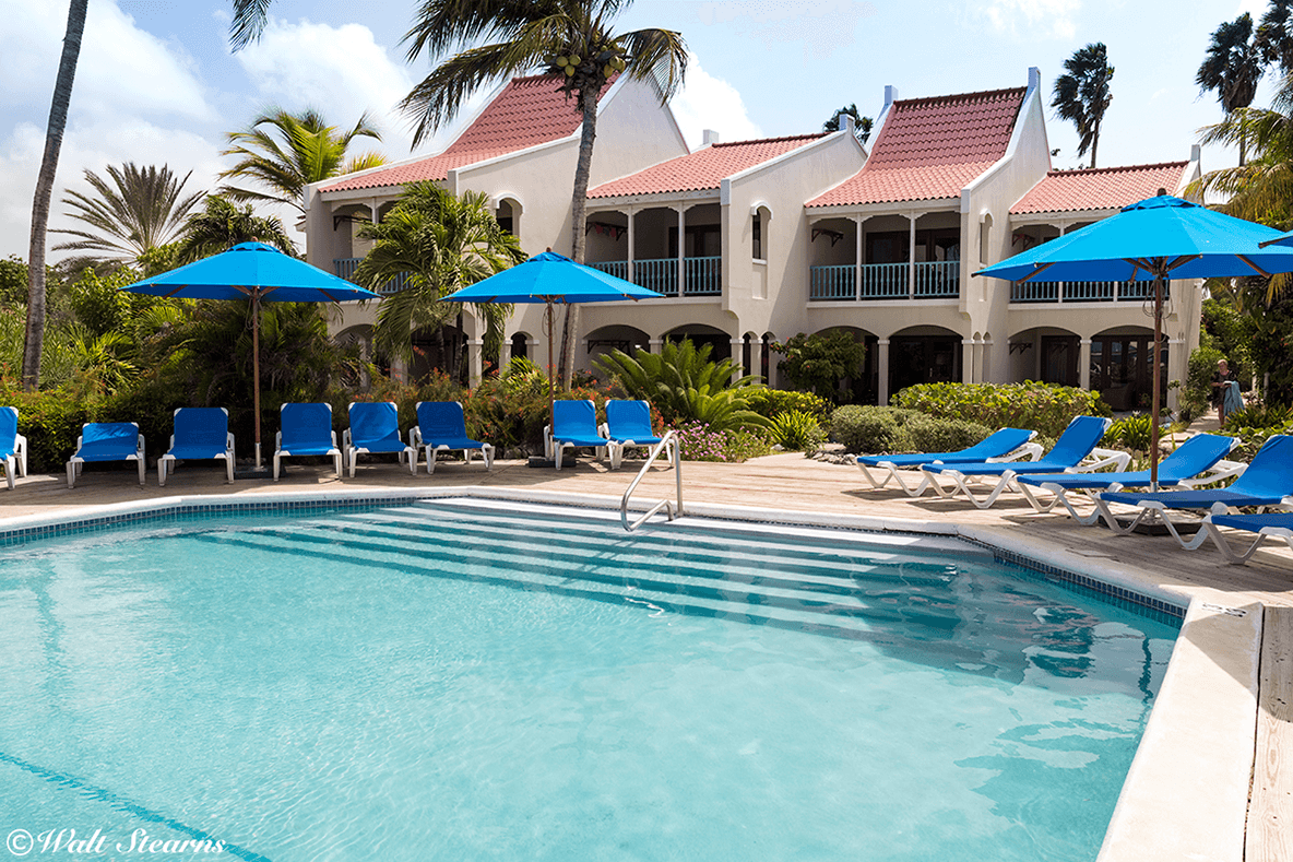 Captain Don's Habitat hosts divers in a collection of spacious rooms, suites and bungalows that can accommodate everyone from dive buddies and couples to families and groups.
