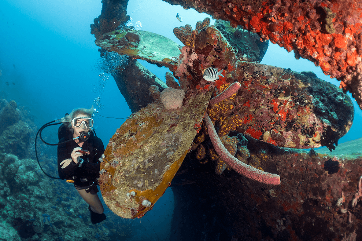 A favorite site visited by dive boats from Captain Don's is the wreck of the Hilma Hooker.