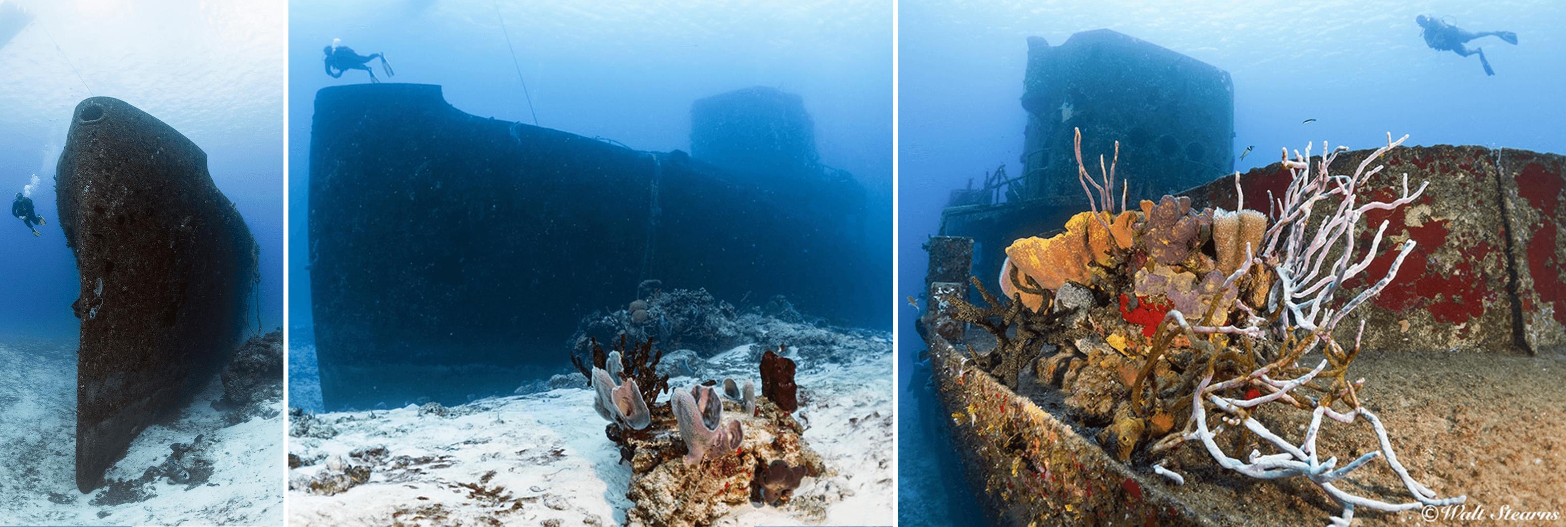 The Felipe Xicotencatl shipwreck is a favorite dive.