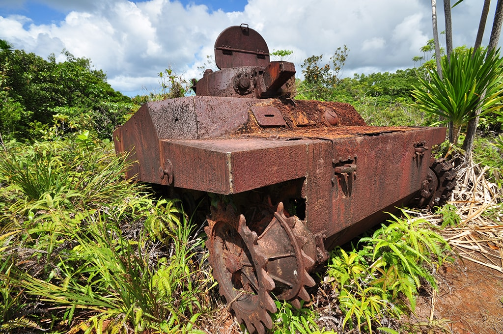 Palau's jungles hold historical artifacts from the Second World War.