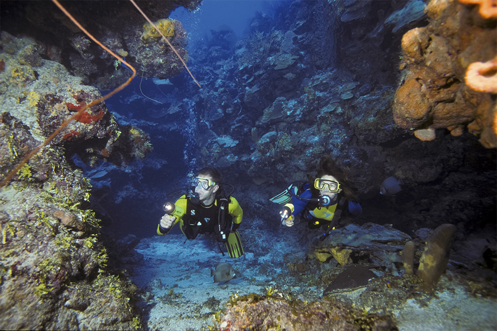 On sites like Snapper Hole, divers can explore deep ravines with walls 20 to 30 feet high in the 40- to 60-foot depth range offering a maze-like networks of tunnels, caverns and arches winding through the reef.