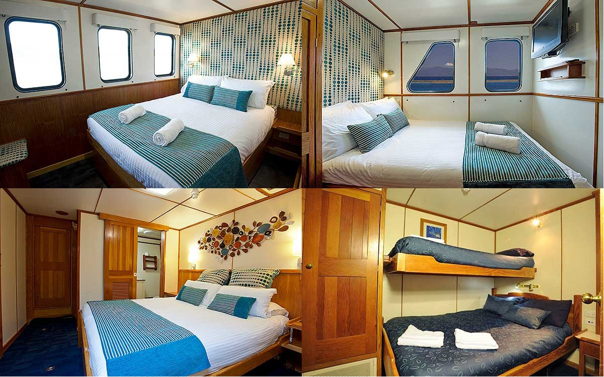 Guest quarters aboard the Spirit of Freedom include (clockwise from top right) Ocean View, Twin Share, Stateroom and Ocean View Deluxe cabins.