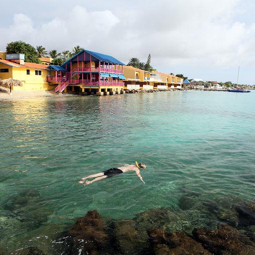 Snorkeling in Bonaire