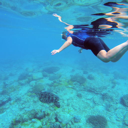 Snorkeling in Dominica