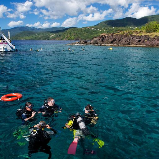 SCUBA diving in Guadeloupe
