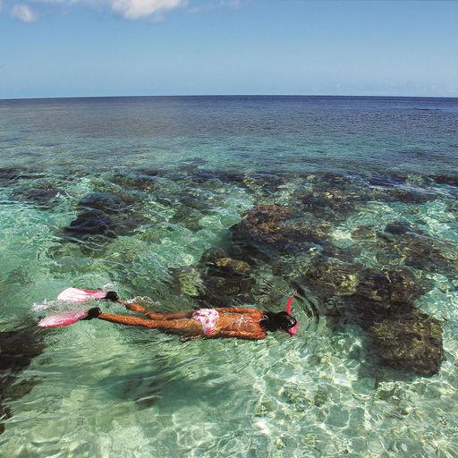 Snorkeling in the Bay Islands