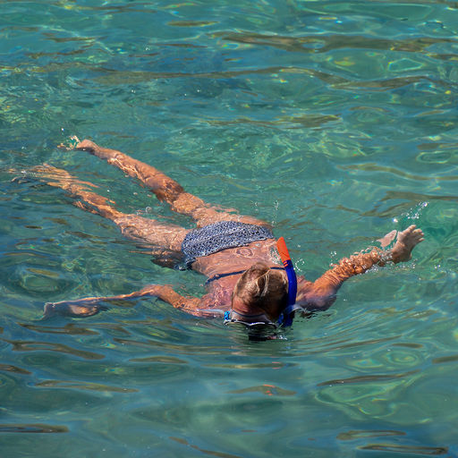 Snorkeling in St. Kitts and Nevis