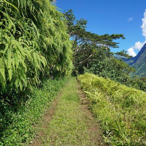 Offroading in Tahiti