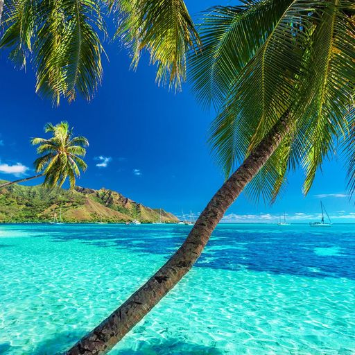 Vacations in Tahiti