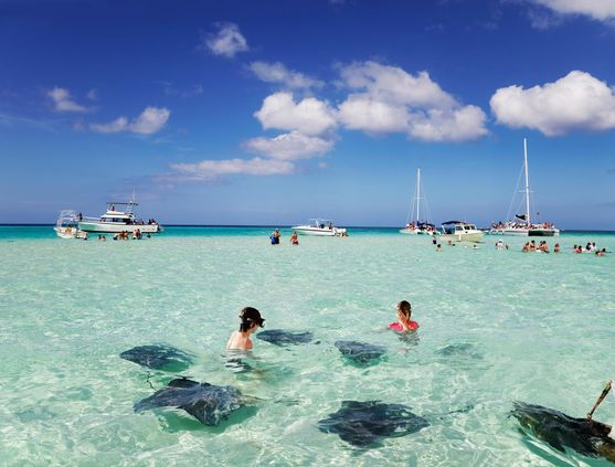 Snorkeling in the Cayman Islands