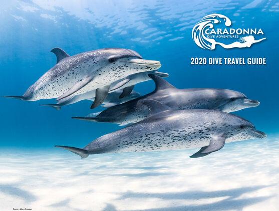 2020 Digital Dive Travel Guide