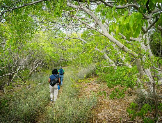 Hiking in Curacao