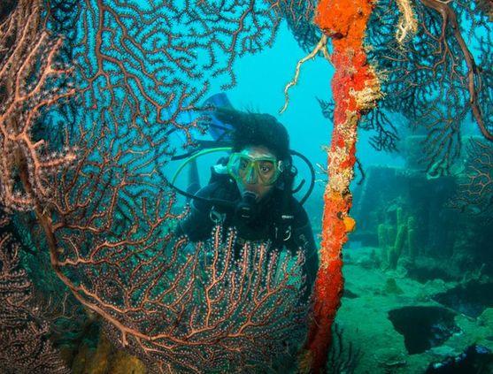 SCUBA diving in St. Lucia