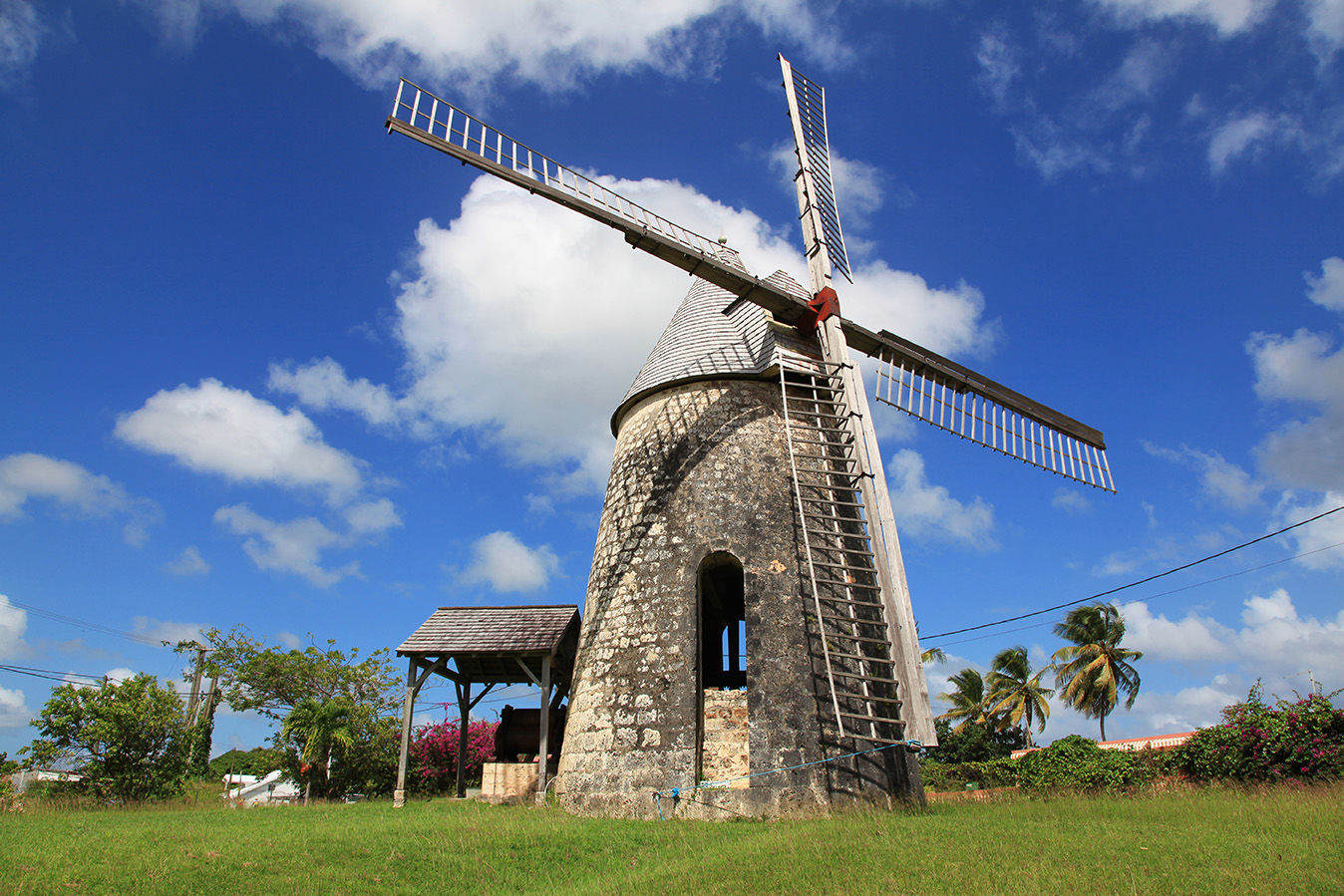 Cultural Activities in Guadeloupe
