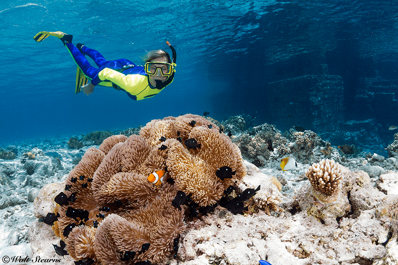 Wakatobi's House Reef includes hundreds of acres of shallow coral gardens that are ideal for exploration from the surface.