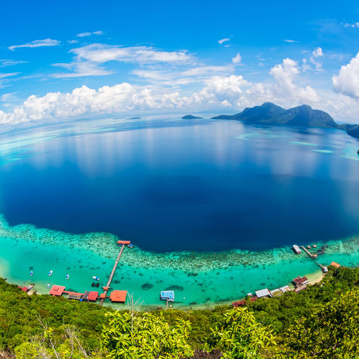 Along Malaysia's shoreline offers the visitor the perfect transition where the wooded jungle meets the coral jungle as part of your scuba diving vacation