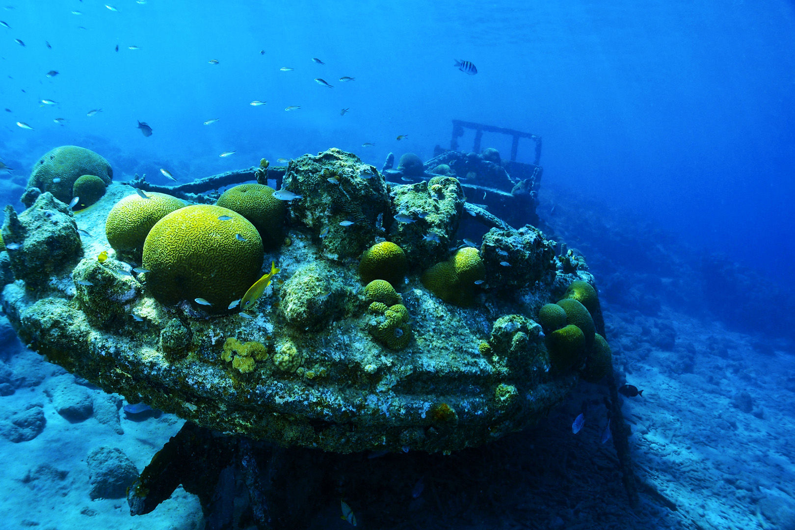 Tugboat wreck lying in the sunlit shallows in Curacao