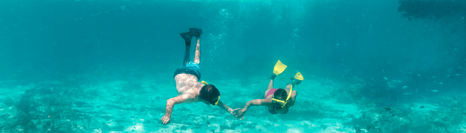 You can discover some of Aruba's best snorkel sites right from the beach or take a boat trip to make it a full day of fun that includes snorkeling, beach time and an island BBQ when you stay at Divi Resort.