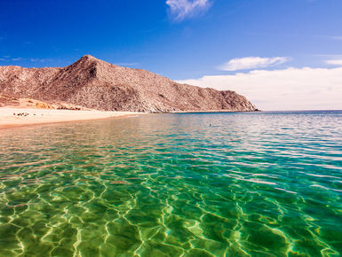 The rich waters of the Sea of Cortez will provide divers with a dazzling variety marine life with a mixture of raw scenic beauty above water