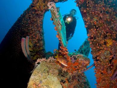Diver exploring the Hilma Hooker wreck in Bonaire