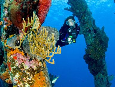 Female diver meanders the legs fo the Salt Pier
