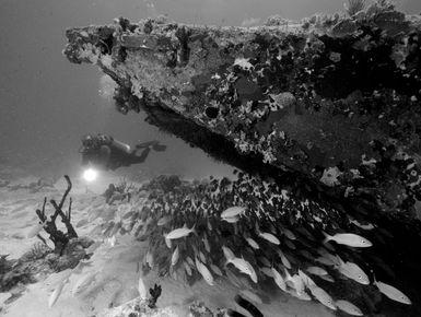Scuba diver exploring a plane wreck in BVI
