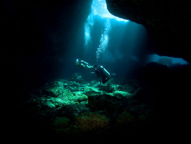 Shaped by fire, Hawaii's volcanic origins are evident in dramatic underwater topographies that include underwater lava tubes and domes for divers to explore