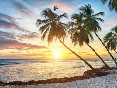 Vacations in Barbados