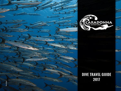 2017 Caradonna Dive Travel Guide
